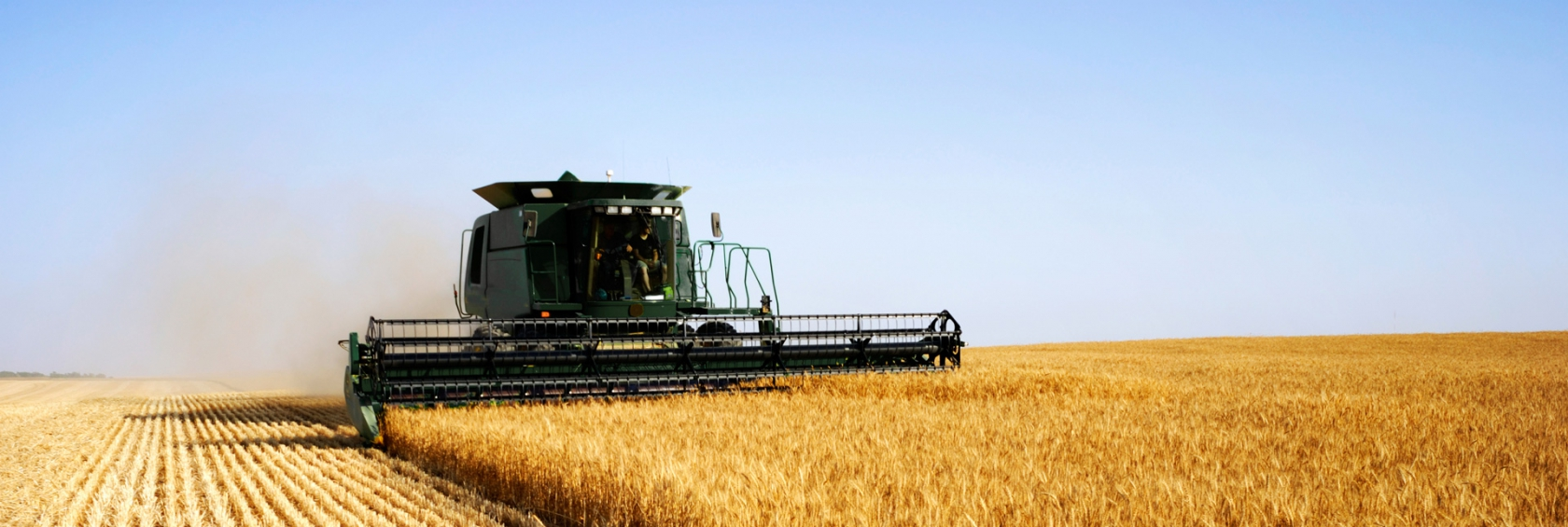 Farmer harvesting crop with combine